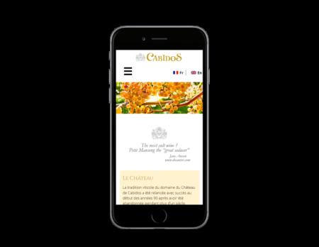 Chateau de Cabidos, domaine viticole sélectionne REZO 21 pour le développement de sa boutique en ligne sur WooCoommerce, vue sur mobile