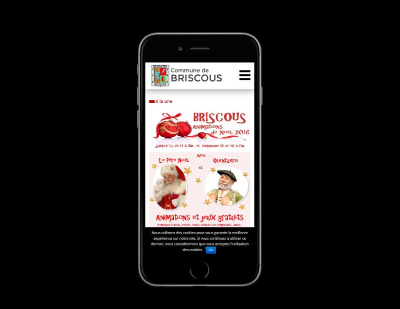 La ville de Briscous retient l'agence web REZO 21 Anglet pour la refonte de son site Internet, vue sur mobile