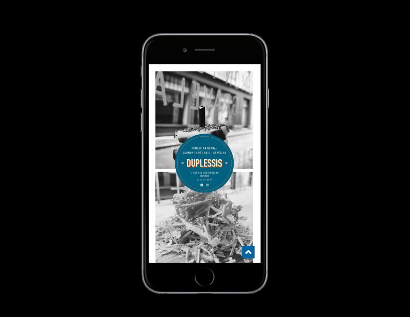 Site Internet Duplessis Bayonne réalisé par l'agence web rezo 21 vue sur mobile