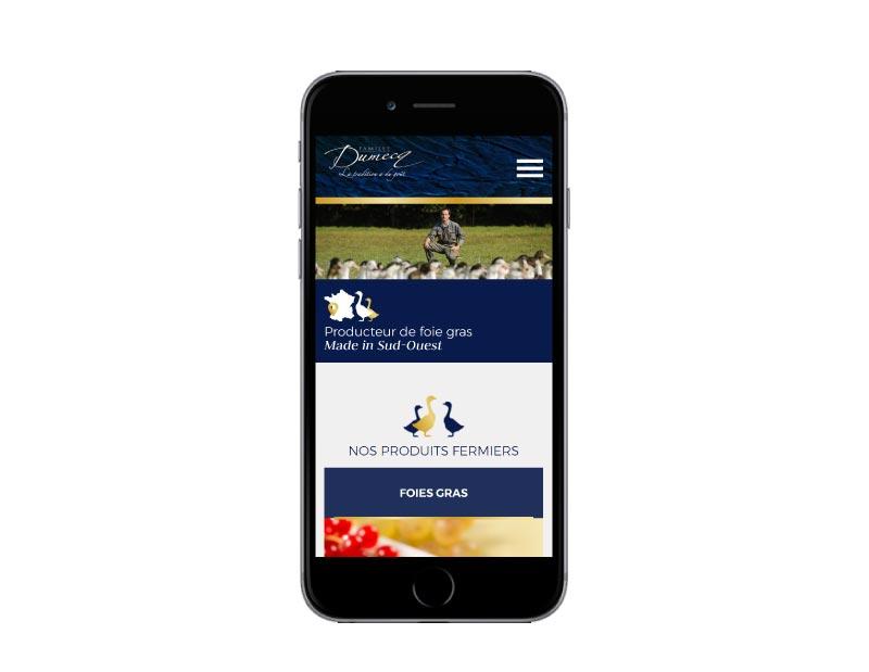 Rezo 21 agence digitale développe le ecommerce de vente en ligne de foie gras de canard des Landes Famille Dumecq responsive mobile