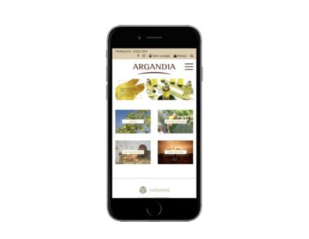 Développement WooCommerce responsive mobile